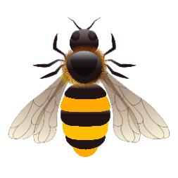 Bee_21